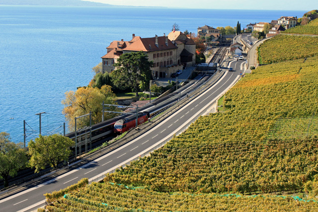 Railway Line and Main Road at Chateux de Glérolles, Lavaux