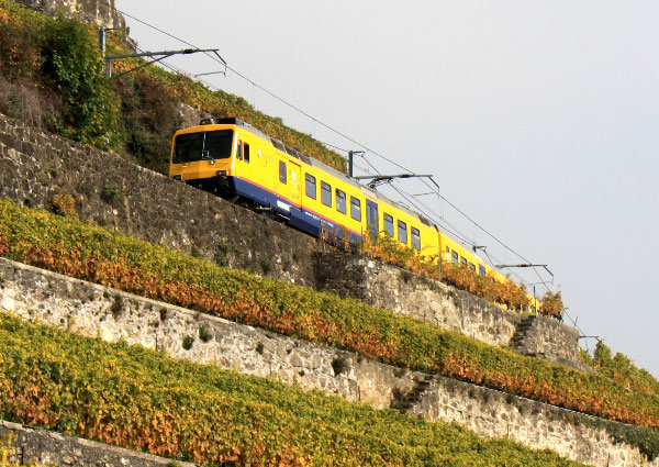 Vineyard Train from Vevey to Puidoux Chexbres