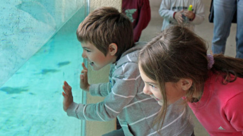 Visit the Servion Zoo and Tropiquarium near Lausanne, Switzerland