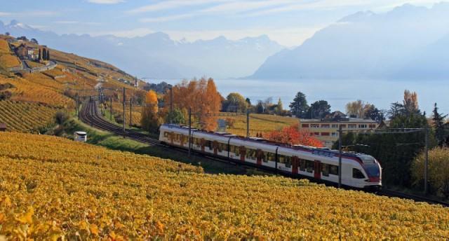 Swiss Train Running Along Lake Geneva