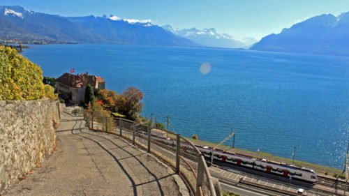 Swiss Train in the Lavaux on Lake Geneva