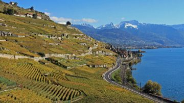 Lakeside Road through the Lavaux to Montreux, Switzerland