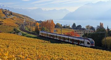 S-Bahn Train in the Lavaux near Lausanne