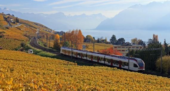 S-Bahn Train in the Lavaux near Lausanne