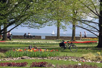 Sailboats seen on Lake Geneva during the Morges Tulip Festival in Switzerland