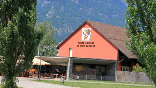 Visit the Museum and Dogs of St Bernhard in Martigny, Switzerland
