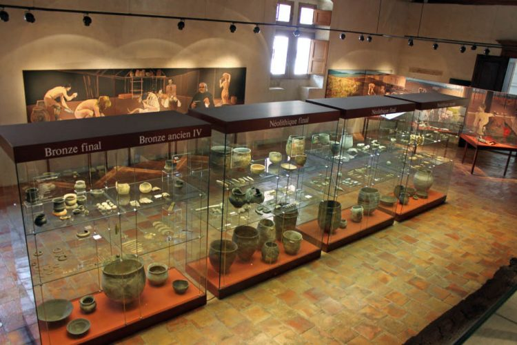 Archaeological Finds in Yverdon Castle and Museum