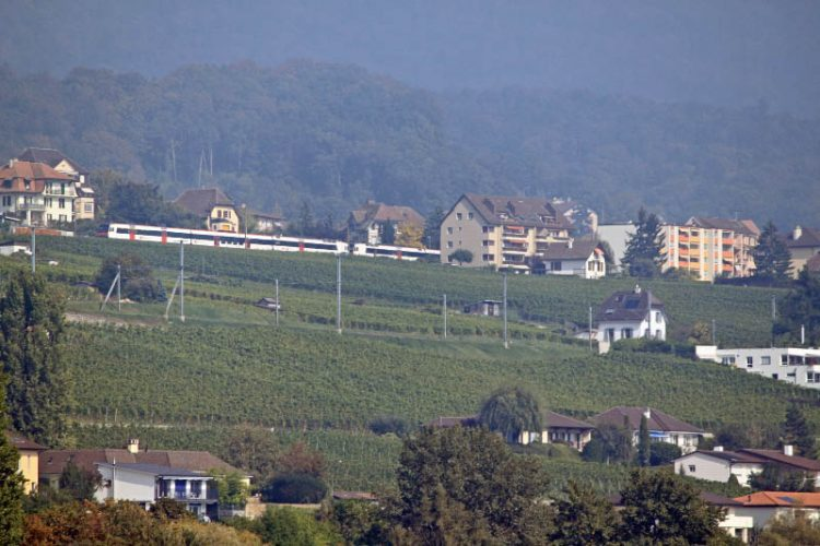 Train Approaching Neuchatel