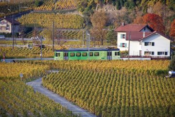 Train near Château d'Aigle Castle in Switzerland