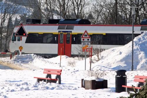 Train Entering Le Pont Station on Lac de Joux, Switzerland