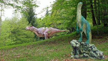 Dinosaur Models in the Dino Zoo and Prehistoric Park
