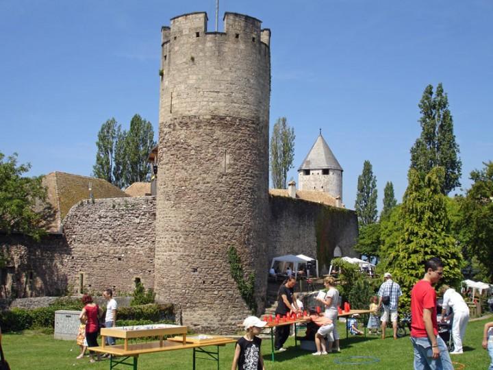 La-Tour-de-Peilz near Vevey