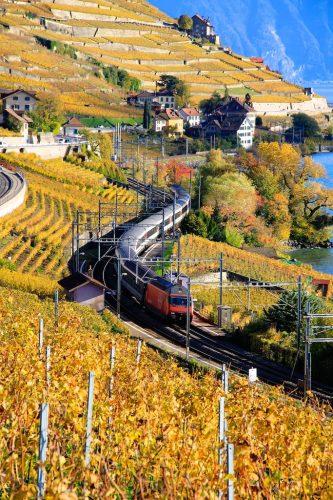 Train next to Lake Geneva