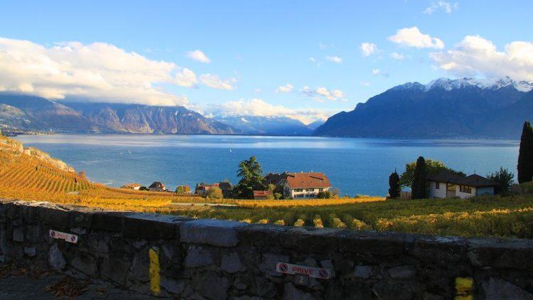 Lavaux vineyards, Lake Geneva and Alps