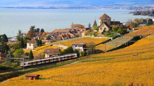 Lavaux train in autumn