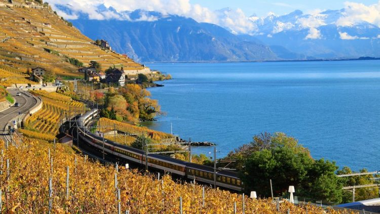 Trains in the Lavaux in Autumn