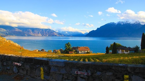 Lavaux in Autumn on Lake Geneva