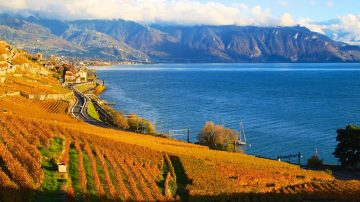 Lavaux on Lake Geneva in Autumn