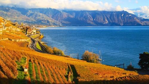 Lavaux on Lake Geneva in Autumn