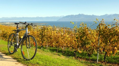 Cycle Around Lake Geneva in Switzerland and France