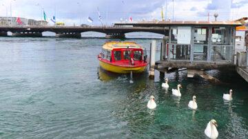 Mouette Ferry Boat in Geneva