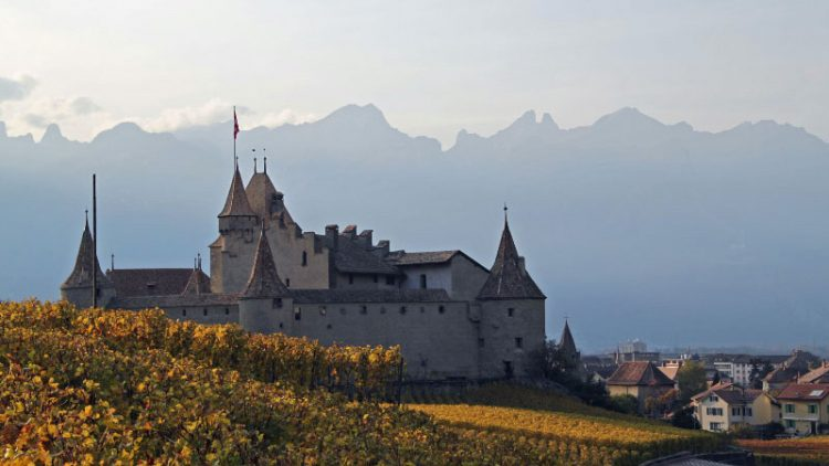 Château d'Aigle, a historic castle beautifully surrounded by vineyards, is photogenic at the best of times but never more so than during autumn when the vines turn yellow, orange, and red for perfect photos.