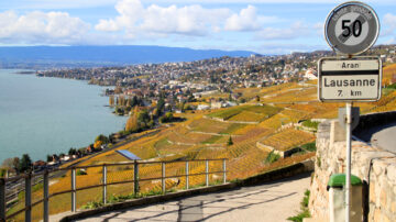 Lavaux View Towards Lausanne in Autumn